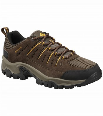 Lakeview 2 Low Hiking Shoes