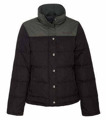 Apex 600 Ecodown Jacket